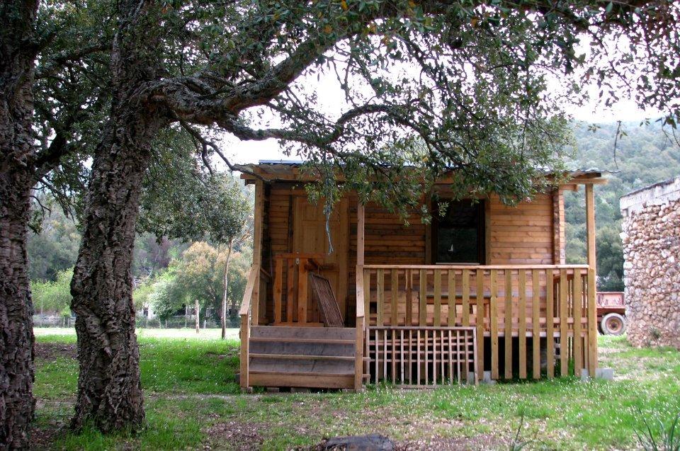 Vivre près des arbres en pleine campagne. Camping